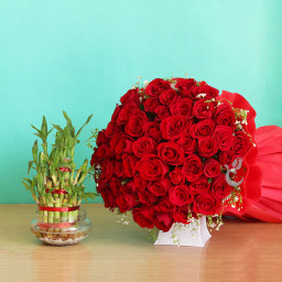 Gift of 50 Red Roses + 1 Lucky Bamboo