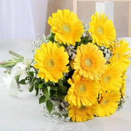 10 yellow gerberas