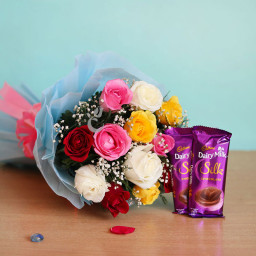 Combo Of 12 MIix Roses And 2 Dairy Milk Silk Chocolates