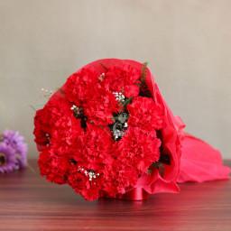 12 red carnation