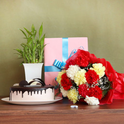Gift Hamper of 12 Mix Carnation Bouquet + Bamboo + Greeting Card + Half kg Chocolate Cake