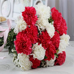 https://cdn.nikkiflower.com/images/flower-carnations.jpg