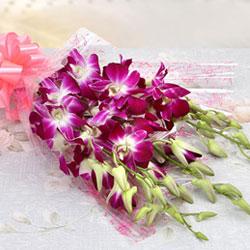 https://cdn.nikkiflower.com/images/flower-orchid.jpg